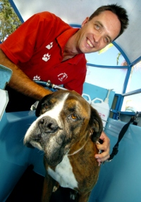 Aussie Pooch Mobile Franchise with his Boxer dog