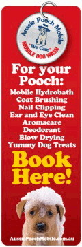 Book your dog wash or grooming service here!