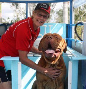 prepare your dog for a dog bath hydrobath aussie pooch mobile big dog