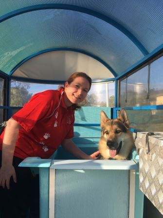 Pooch pampering services for Thornton dogs