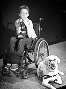 red assistance dogs puppies special kids special needs children aussie pooch mobile fundraising