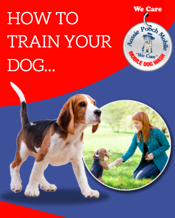FREE eBook On Dog Training