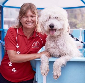 Meet Our Support Team | Aussie Pooch Mobile
