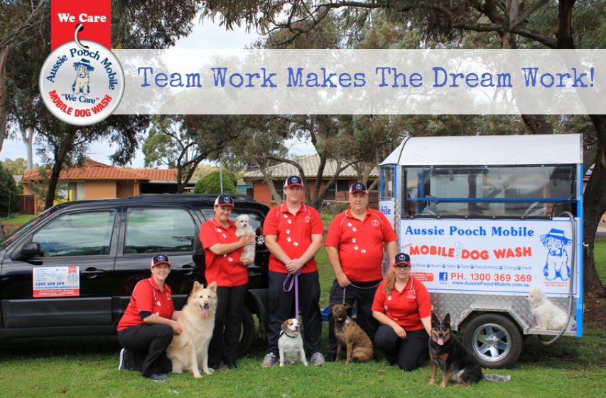 Family business family values family matters aussie pooch mobile what they do when you join this family business you will have the good fortune of choosing your own hours earning a great income and playing with solutioingenieria Images