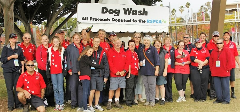 Aussie Pooch Mobile Sydney Million Paws Walk Animal Welfare