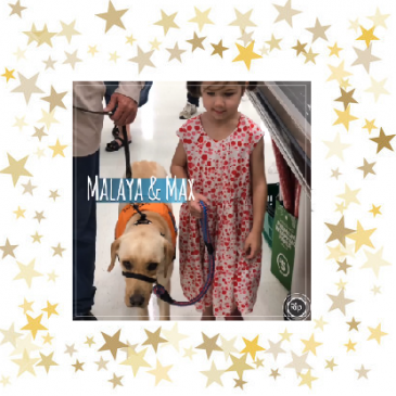 Empower Assistance Dog Max – A special gift for a special little girl