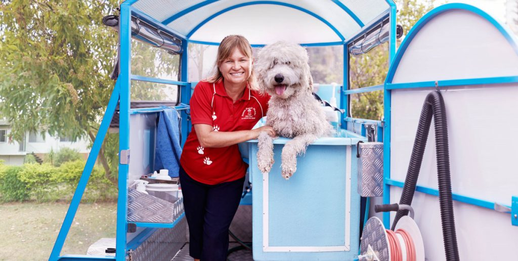 classic service standard service basic service aussie pooch mobile dog wash and grooming we care