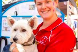 Aussie pooch mobile dog wash grooming franchise ph 1300 369 369 dog lovers dream office space solutioingenieria Gallery