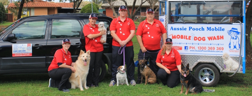 dog loving family business franchise