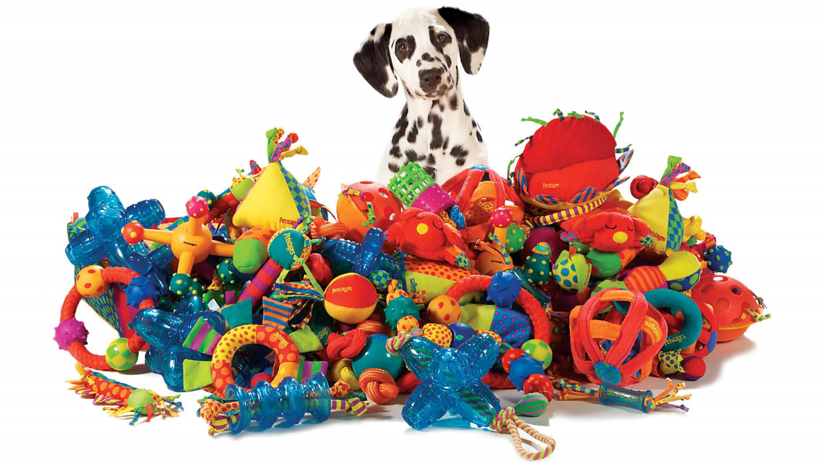 quality pet products for your dog dog toys