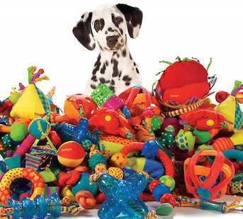 Pet Products direct from your local groomer