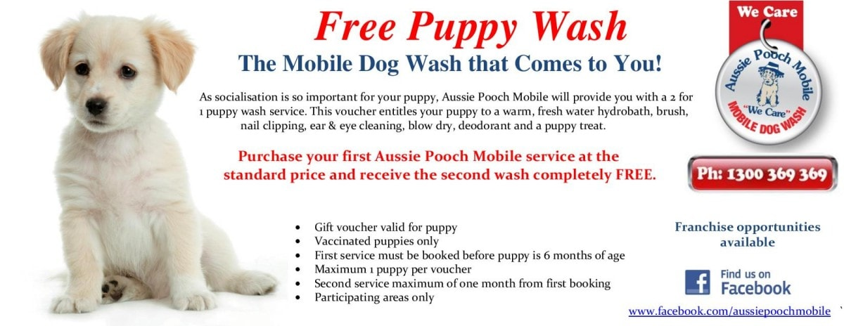 free 2 for 1 puppy wash voucher