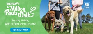 million paws walk 2019 Aussie pooch mobile